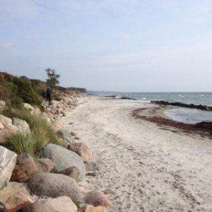 stranden_moen